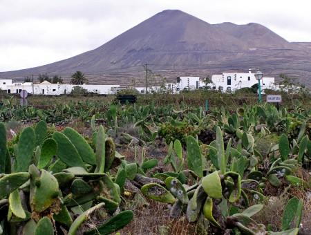 Lanzarote, 6 paesaggi imperdibili delle Canarie che non ti aspetti