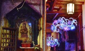 Non chiamatele luminarie: Luci d'Artista a Salerno
