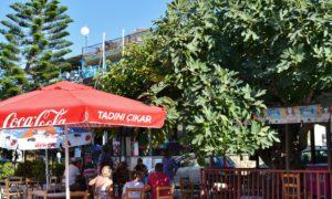 All'ombra degli alberi dell'ozio, a Bellapais