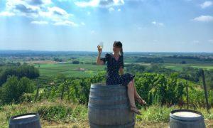 Tra vino e cultura, una giornata sui colli orientali del Friuli