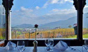 Slovenia orientale da scoprire: Slovenske Konjice tra cavalli, abbazie e buon vino