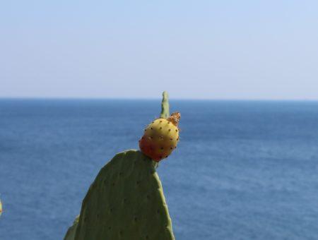 Costa adriatica del Salento: le tappe da non perdere da Lecce a Otranto