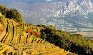 Slovenia, cosa vedere nella Valle del Vipava