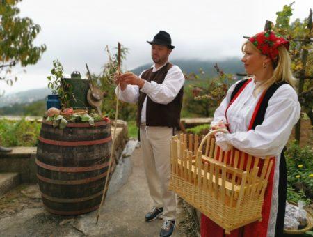 Istria croata: itinerario da Opatija alle tradizioni dell'entroterra