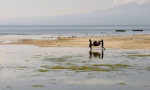 Filippine: a Siquijor, l'isola degli sciamani