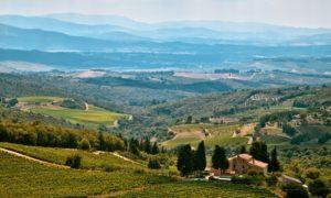 Toscana da gustare: 3 tappe immancabili per gli amanti dei vini rossi
