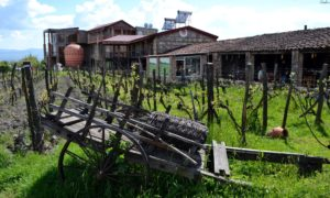 Il vino in anfora della Georgia: cosa vedere nella regione del Kakheti