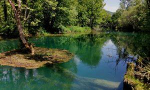 Itinerario alla scoperta dell'Alto Livenza, dove nasce il fiume verde
