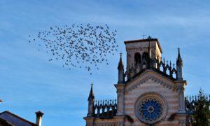 10 borghi storici bellissimi da vedere in Friuli Venezia Giulia