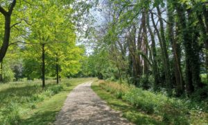 7 passeggiate facilissime nella natura del Friuli Venezia Giulia