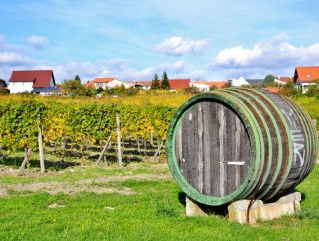 Slovacchia, itinerario in 7 tappe lungo la Strada del Vino dei Piccoli Carpazi